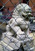 """AUSSIEMANDIUS - """"HOLDING THE LION"""" (zero g) Tags: china animal statue stone fence chinatown chinese lion australia melbourne cage chainlink foo beast barrier fu bourkestreet shi eclectic myth guardian itstheendoftheworldasweknowit theapocalypse theflickys anythingeverything fireawayanythingartisticasfastasyoucan melbourneandbeyond reallyunlimited phonyanimals allthingswhite australianflickr punwithpictures stuffstuffstuff allsizesavailable ruishi 472008 lionsinstatues desertedmelbourne3000 melbournechinesemuseum"""