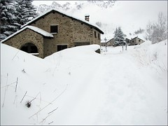 neve (: panti :) Tags: alberi casa camino case neve inverno montagna casette pini innevata tantaneve strdainnevata
