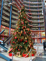 Thompson Center Tree