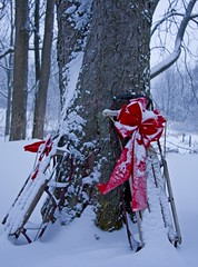 A Gift (Matt Champlin) Tags: life christmas old winter red holiday snow storm rural canon landscape snowy antique country gift bow sledding sled blizzard redbow wintery skaneateles countrywinterscene mywinners eos40d