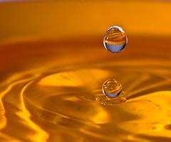 20090127_4300 (Lino Sgaravizzi ) Tags: macro acqua gocce dros mywinners goldstaraward