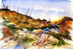 The March Lion Softly Prowling on Lakeland Park Dune (Art and Nature-Mike Sherman) Tags: art watercolor painting dune lakemichigan saugatuck pleinair lakelandpark lakelandtownship