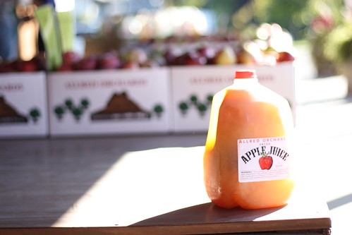 Apple Juice at Allred Farms Stand in Provo, Utah