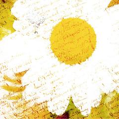daisy textures 3