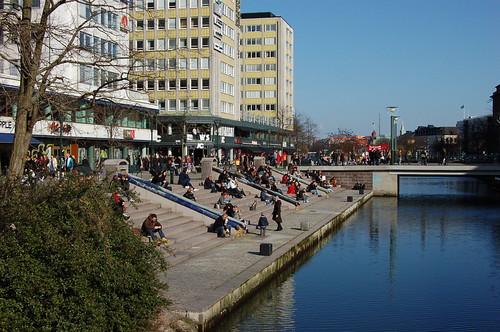 運河で日光浴