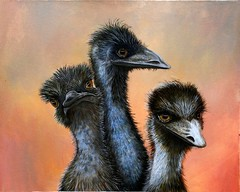Emus (jennie-robyn) Tags: art painting acrylic originalart wildlife australianbirds nativeaustralian anawesomeshot cockatoobirdbirdsaustralian