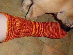 Aunty's sock