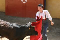 tienta 02 (ma_n_u_e_l) Tags: corrida sville tienta ganaderas