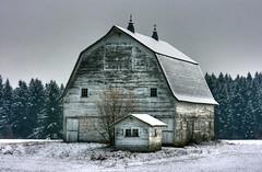 SNOW BARN HDR copy (jodi_tripp) Tags: trees white snow barn landscape shed joditripp challengeyouwinner rurla winter08 wwwjoditrippcom photographybyjodtripp