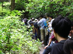 Enormous queue on Mt Takao