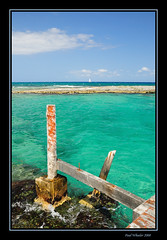 Green Sea - Mexico (Paul_Wheeler) Tags: sea seascape green nature water landscape mexico coast nikon scenic yucatan caribbean rivieramaya waterscape d300 mywinners platinumphoto superbmasterpiece
