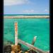 Green Sea - Mexico