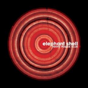 elephant_shell