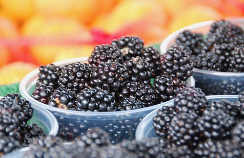 farmers' market blackberries