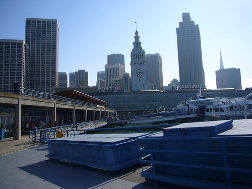 downtown viewed from the ferry terminal