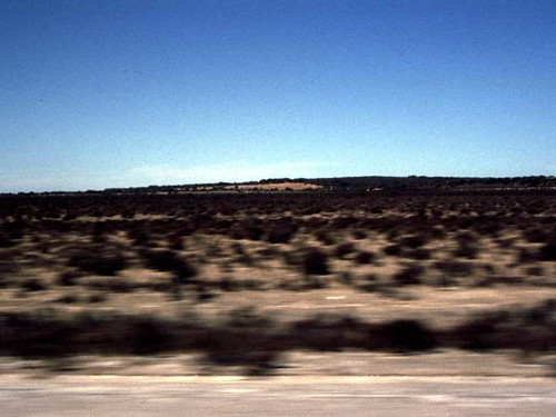Nullarbor at 110km/h