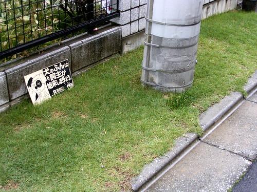 小道の芝生。