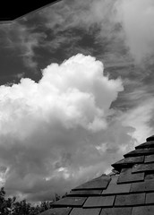 cloud menace (venetia 27) Tags: trees roof sky broken clouds skylight tiles oxford fromkitchen lastdayofwimbledon