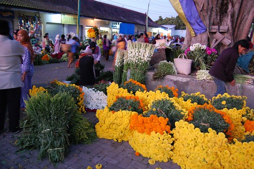 Early morning at Flower Market Bandungan, Central Java - Indonesia