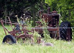 Old Equipment (hz536n/George Thomas) Tags: summer orange tractor green oklahoma stillwater 2008 smörgåsbord cs3 canon30d kartpostal canonef70200mmf4lusm