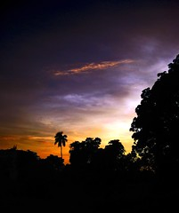 Twilight (sir_watkyn) Tags: blue trees light sunset orange india landscape golden interestingness twilight glow colours quality dar silhouettes hues pixels fiatlux blueribbonwinner abigfave aplusphoto ysplix excapture goldstaraward rubyphotographer flickrbestpics chakdighi lifetravel sirwatkyn