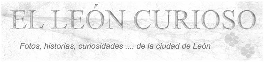 El León Curioso