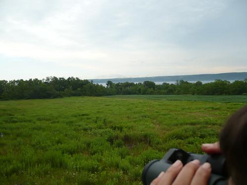 View - NY 08