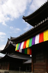old five colors (takmagar) Tags: old travel sea sky flower color japan stone temple japanese kyoto shrine plum kitano ume kumano wakayama touji jingoji