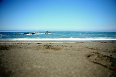 Bodega Bay, California 4