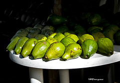 Aguacate_0000 (HVargas) Tags: street slr beautiful fruit wonderful sadness stand amazing dominicanrepublic gorgeous ef50mmf14 sos lover striking canoneos republicadominicana aguacate smrgsbord contanza canoneos5d canonlens liebre ef100400mml bonao ef100400mm ef135mm efs1755mm canonrebelxti ef300mm ef180mm ef135 lifebeautiful digitaleeanalogico ef14x goldenphotographer canoneos40d canon40d ef400mm ef300 wonderfulworldmix kuwaitartphoto excapturemacro macro40d ef180mmf35lmacrousm ef28300mm ef1755mm ef3000mm ef283000mm spiritofphotography ourmasterpieces ef400mmf28l efmacro180mm ef28300mml macroef180mml macroefs60mmf28 canonef28300mml