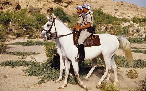 Omanska kraljevska policija: