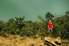 o tronco e o cerrado (Jayme Diogo) Tags: verde rio lago agua nikon cu corumb silvania d40