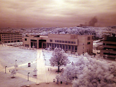 UMBC Commons in infrared (MasterGeorge) Tags: county ir lumix university maryland commons baltimore panasonic filter infrared hoya umbc r72 fz18