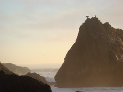MartinsBeach_2007-218 (Martins Beach, California, United States) Photo