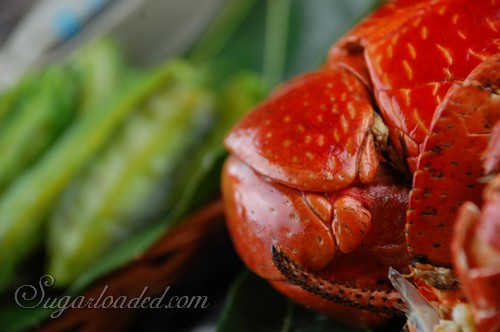 Batanes Foods 00013