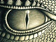 Eye of a Dragon (Awesomehairdude) Tags: blue eye dragon bright scales series inside inheritance saphira eragon bjarskular