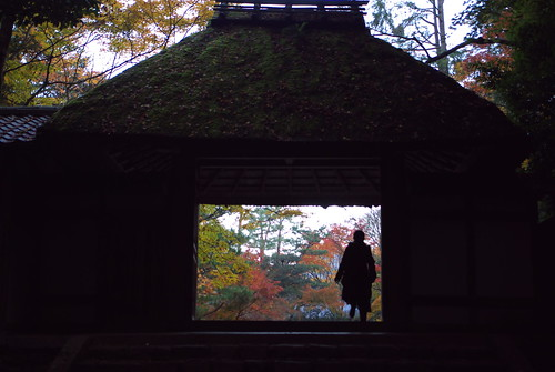 Honen-in temple (法然院)