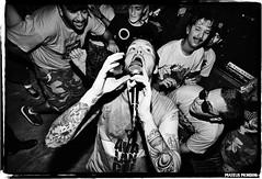 nitad008 (MateusMondini) Tags: punk hardcore suecia nitad