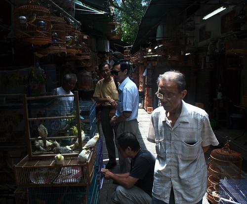 Yuen Po Street Bird Garden 07