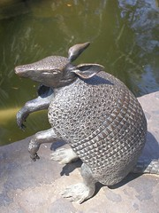 Armadillo (JoWiJo) Tags: park nature water pool outdoors texas armadillo dallasarboretum dallasblooms layornamentalgarden
