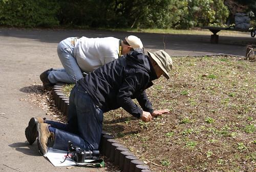 Fotógrafos en Japón