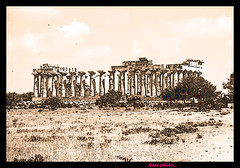 Selinunte archaeological park is the largest in Europe (danielelive! restiamo umani e vivi lol!) Tags: alarecherchedutempperdu