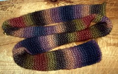 ISE6scarf508