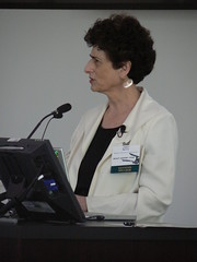 Image of Janet Murray presenting at Faculty Academy 2008