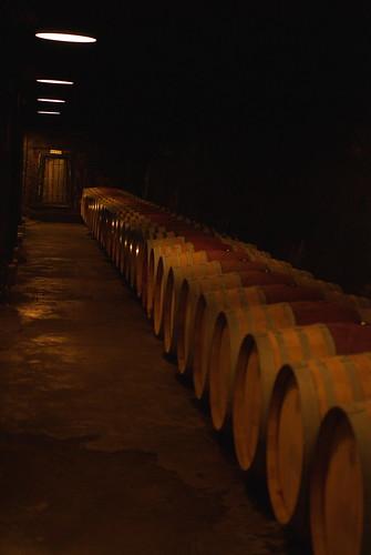 20080712050純粋葡萄酒
