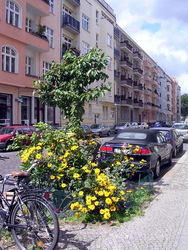 Freiligrathstraße, 10967 Berlin
