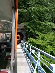 森石橋を渡るトロッコ電車