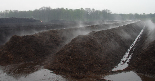 Steaming Compost Heaps at East Bay Facility