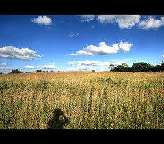 Golden Harvest (Mandana (on and off)) Tags: blue summer sky me nature wisconsin clouds photoshop canon golden amber midwest wheat harvest picasa wideangle shaddow clear heartland prairie d30 hdrsoft mywinners aplusphoto photomatixpro3