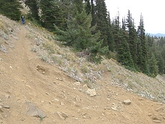 Miller Peak summit trail junction. Trai on right is an alternate longer loop back down.